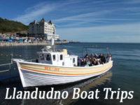 llandudno boat trip